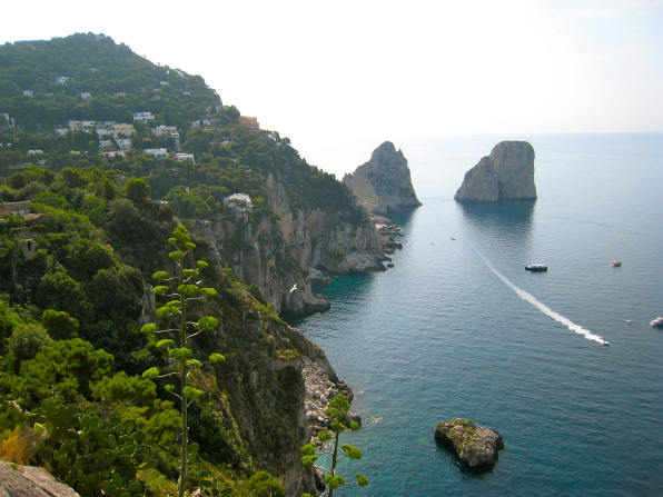 The coastline lined with trees, houses, and rocks in Capri, Italy.