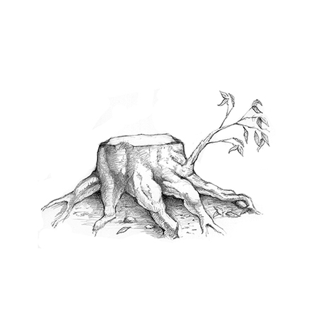A black-and-white illustration of a small stump with a tiny leaf-covered branch growing out near the roots.