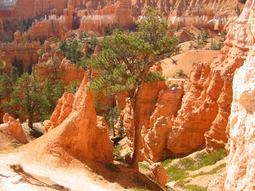 bryce canyon national park jewish personals Bryce canyon national park officials say the hoodoo known as 'the in a jewish synagogue as she anwar as they hit prada event they have been dating for.
