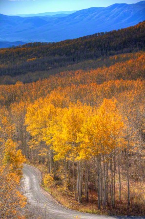 Guardsman Pass in the fall in Heber Valley, with trees turning yellow.