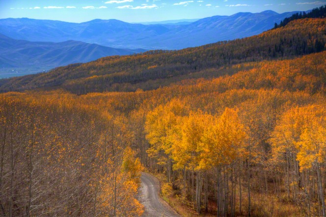Guardsman Pass in Heber Valley, Utah, full of trees with leaves turning orange in the autumn.