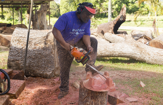 Feinga cutting wood on a tree stump
