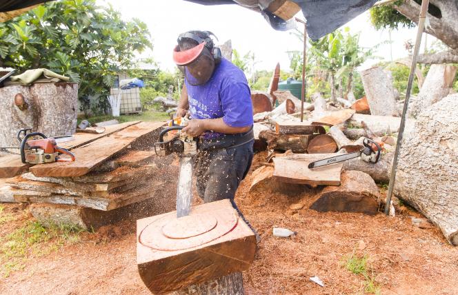 Feinga cutting wood