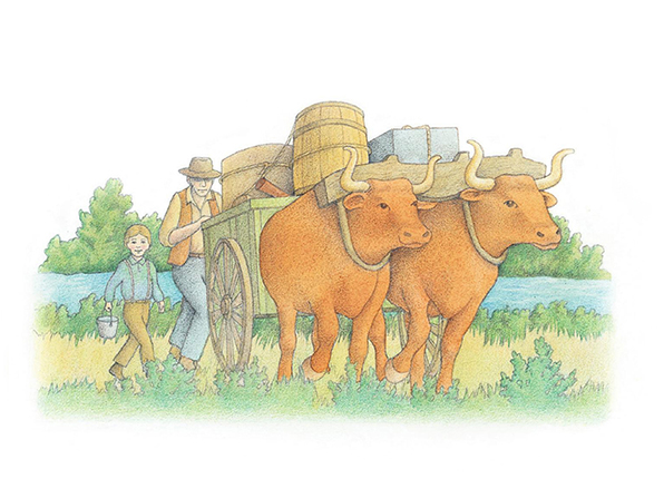 A watercolor illustration of two oxen yoked together, pulling a cart loaded with barrels and boxes.