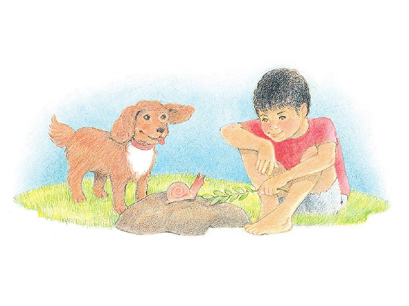 A watercolor illustration of a boy wearing shorts and a red T-shirt, tickling a snail with a small branch of leaves. A dog is nearby.