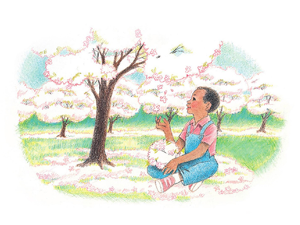 A watercolor illustration of a boy sitting on the ground in an orchard, surrounded by white and pink blossoms, gathering them on his knee.