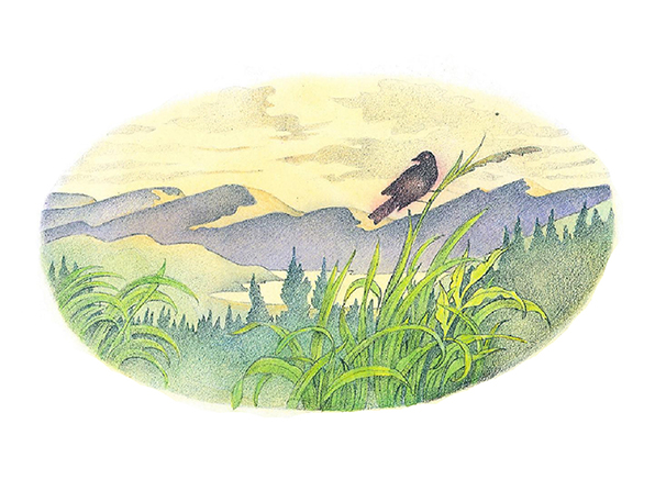 A watercolor illustration of a black bird standing on a tall blade of grass in front of a mountain range.