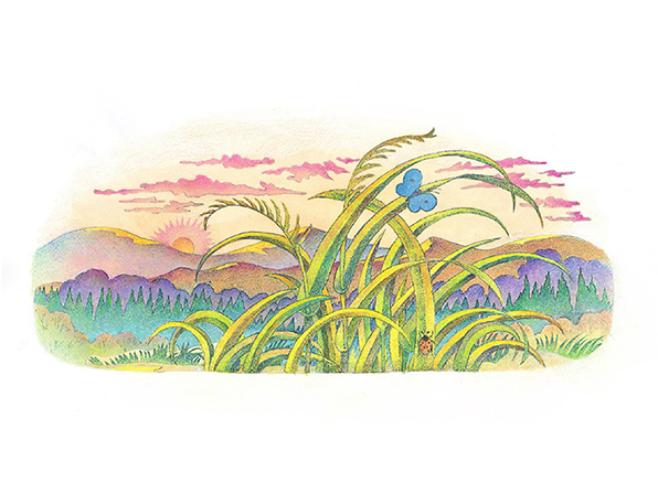 A watercolor illustration of a blue butterfly that has landed on a blade of grass in front of a mountain range, with a rising or setting sun in the background.
