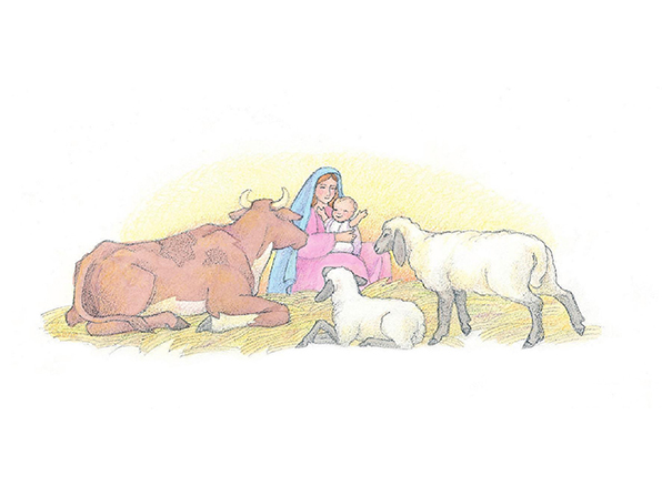 A watercolor illustration of Mary in the stable, holding baby Jesus, with two sheep and a cow sitting nearby.