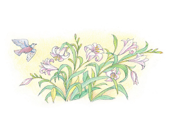 A watercolor illustration of a small bird flying over a bunch of lilies.