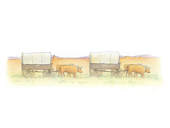 A watercolor illustration of two covered wagons being pulled by two oxen across a desert landscape.