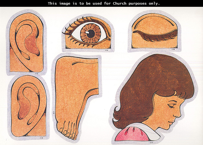 Primary cutouts of a left ear, right ear, feet, an open brown eye, a closed eye, and the head of a girl with brown hair and a pink blouse.