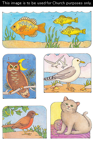 Primary cutouts of three yellow fish swimming, an owl at night, a seagull at the beach, a robin standing, and a cat sitting.