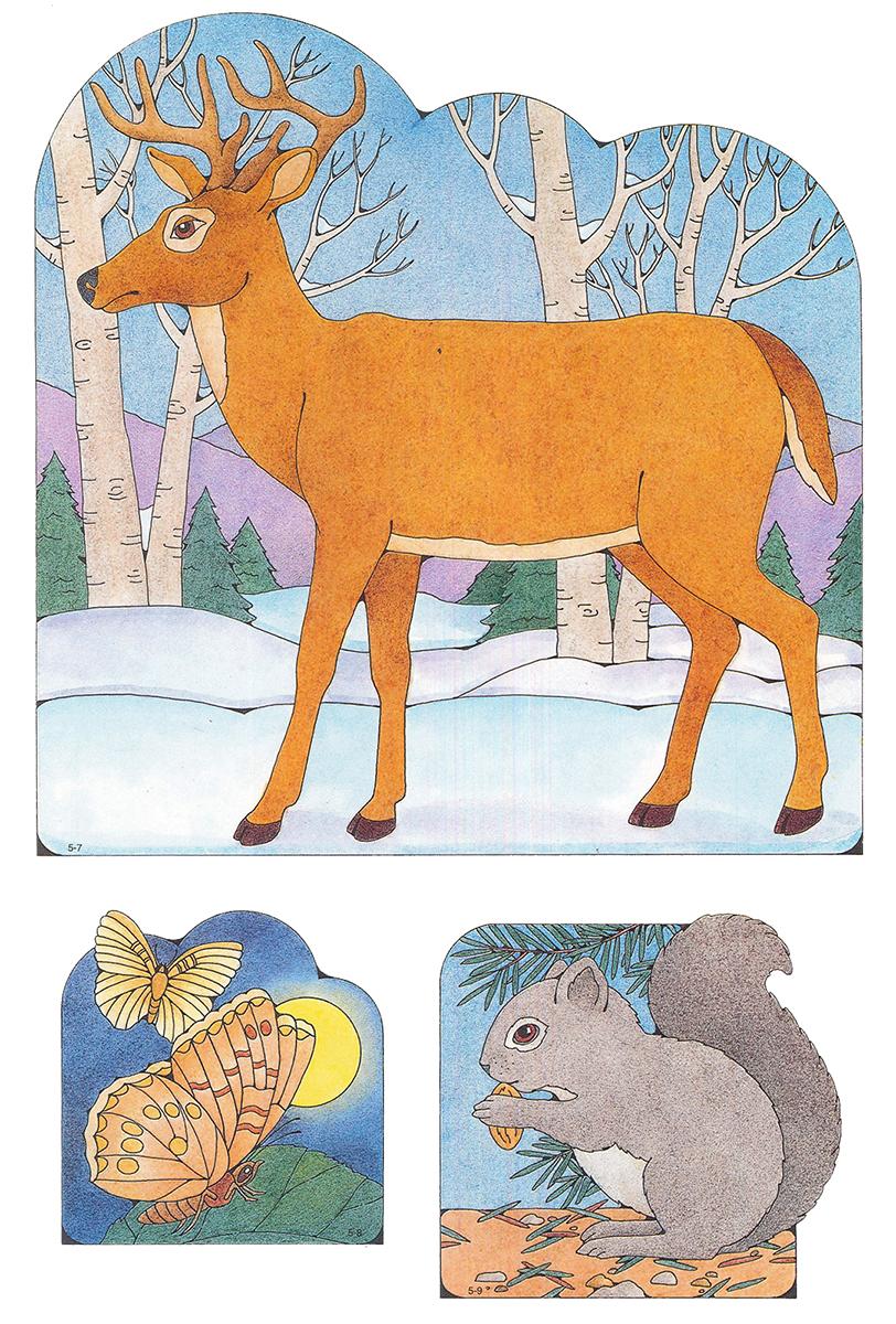 primary visual aids cutouts 5 7 deer 5 8 moths 5 9 squirrel