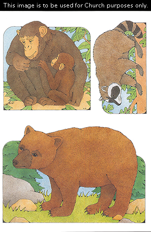 Primary cutouts of a mother chimpanzee sitting with her baby, a raccoon walking, and a bear standing on grass near rocks and pine trees.