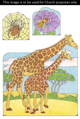Primary cutouts of a brown spider on a spiderweb, a bee on a purple flower, and a mother giraffe walking with her baby.