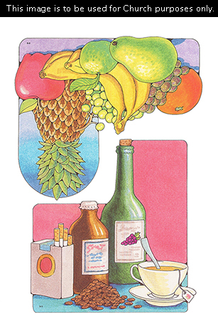 Two Primary cutouts of five unhealthy foods in the Word of Wisdom and a variety of fruits beside each other.