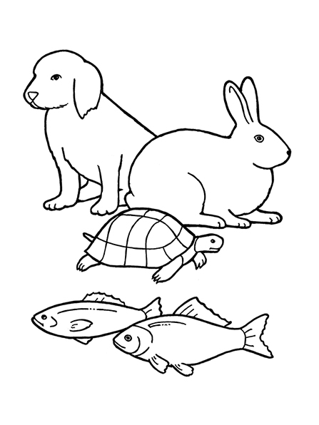 A black-and-white illustration of a puppy, rabbit, turtle, and two fishes.