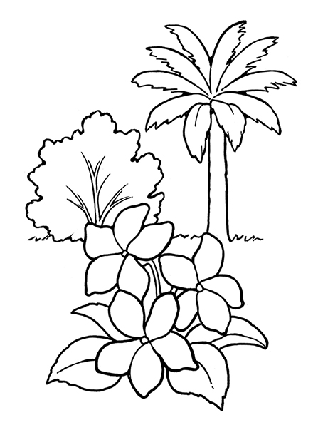 A black-and-white illustration of a palm tree, bush, and three flowers with leaves.