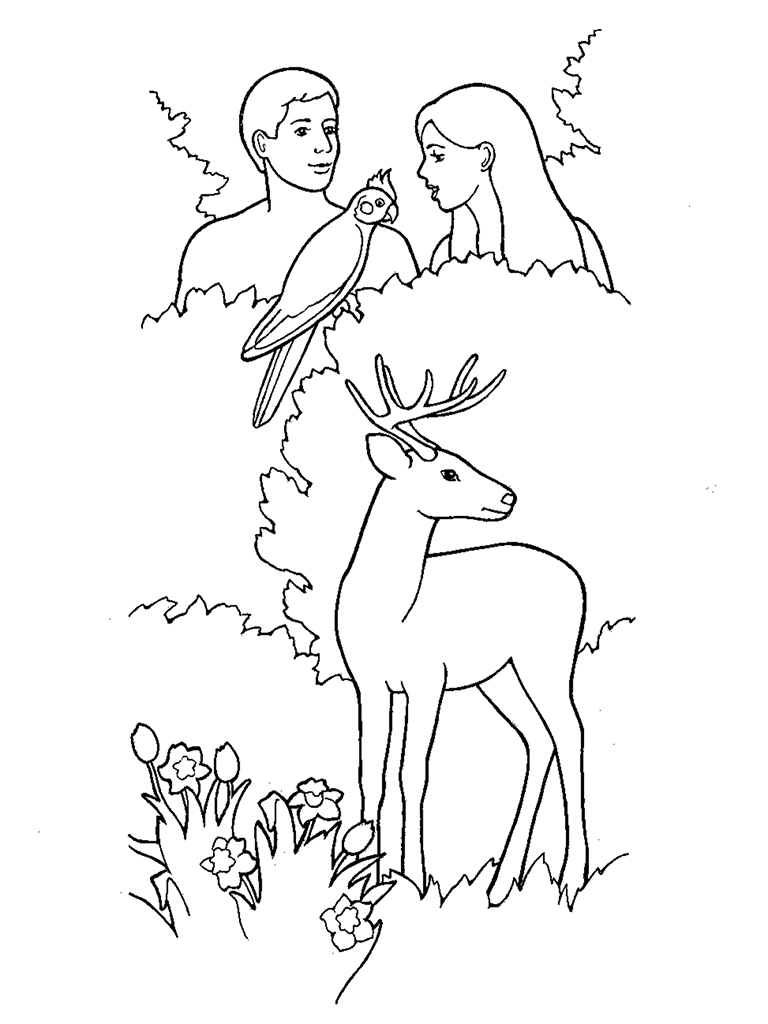 Creation adam and eve in the garden of eden for Adam eve coloring pages