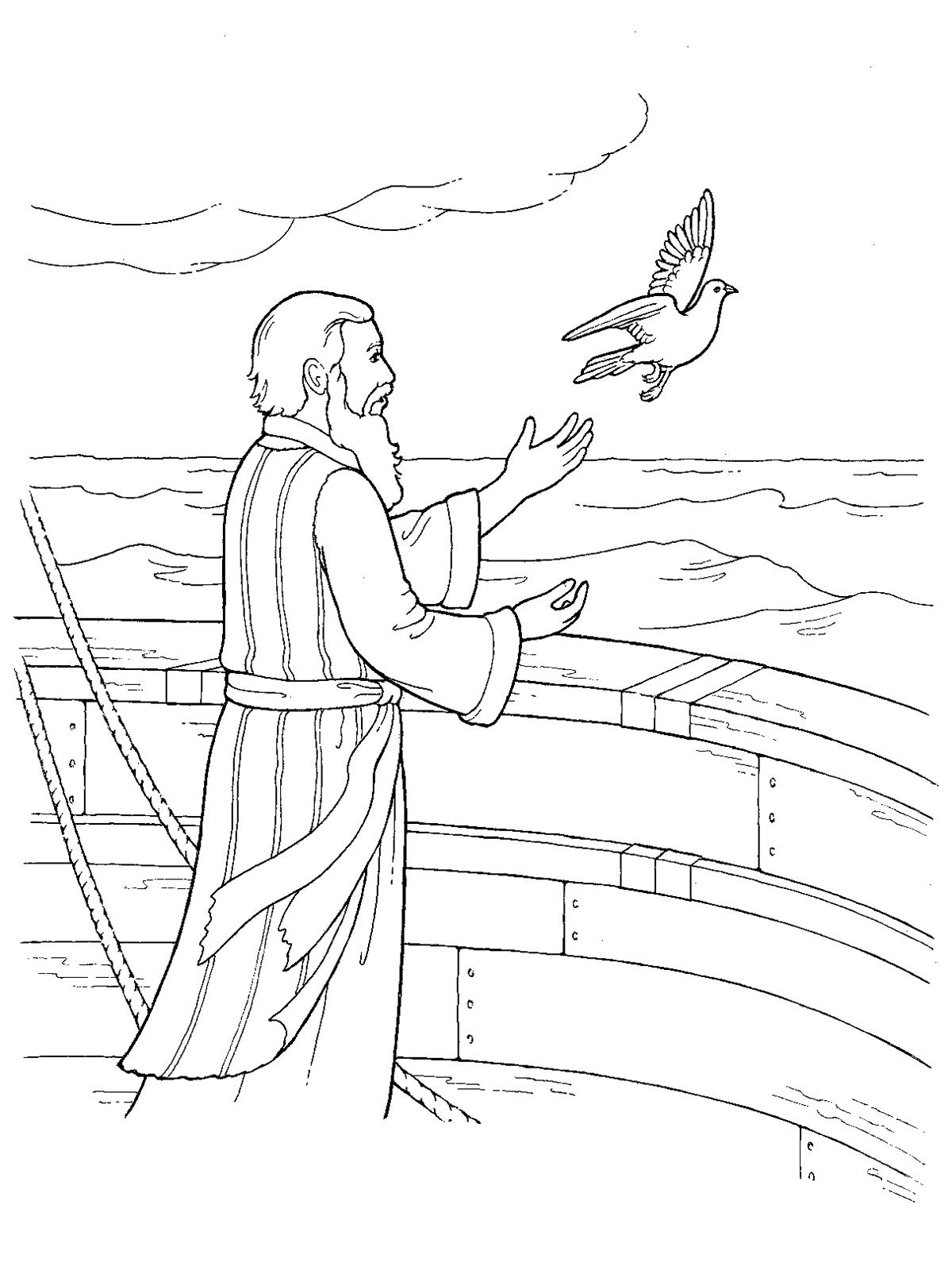 noah releasing a dove