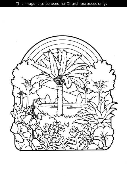 A black-and-white illustration of a palm tree with other trees, plants, shrubs, and flowers around it and a rainbow in the background.