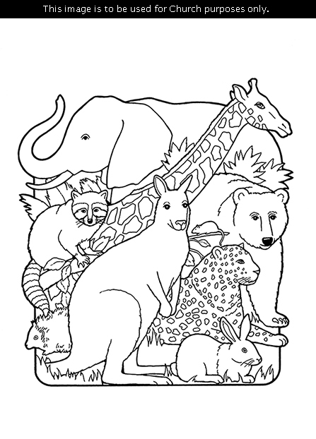 A black-and-white illustration of the creation of animals, including an elephant, giraffe, kangaroo, cheetah, rabbit, raccoon, porcupine, mouse, and bear.