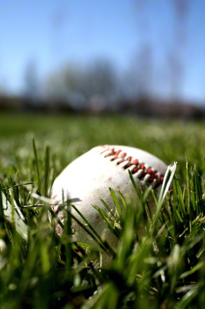 A baseball lying in the grass on a sunny day.