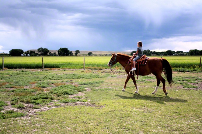 A young girl riding a brown horse near a fence and field.