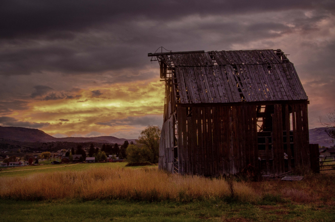 A sunrise over a run-down barn in Utah, surrounded by yellow weeds and houses in the distance.
