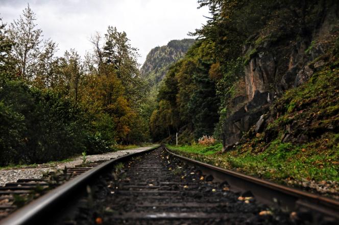 A railroad track that runs through mountains and trees.
