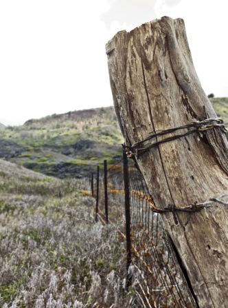 A wire fence with a wooden pole runs through a field.