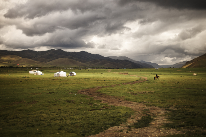 A landscape in Mongolia with grassy plains and mountains in the distance.