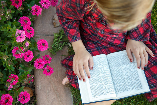 A young girl wearing a plaid dress sits on a patch of grass next to a bed of pink flowers and reads from the Book of Mormon.