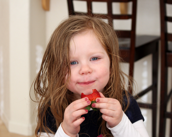 A little girl holds a strawberry in her hands and takes a bite out of it.