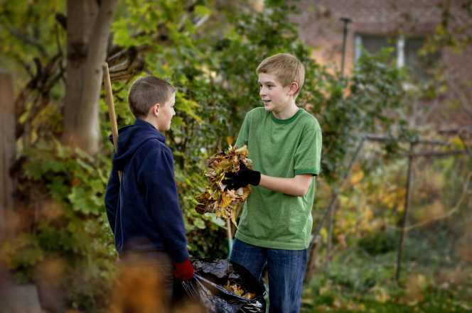 A young boy holds a handful of leaves to put them in a garbage bag, which another young boy is holding open.