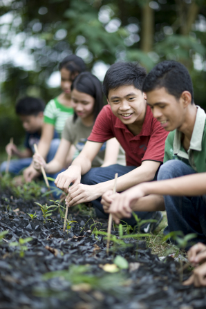 A group of young men and women kneel down in a garden and plant seedlings for a service project.