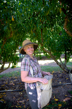 A woman wears a straw hat and holds a bag open as she stands under peach trees.