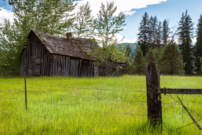An old, decaying barn in a field of tall, bright green grass beyond a fence of barbed wire.