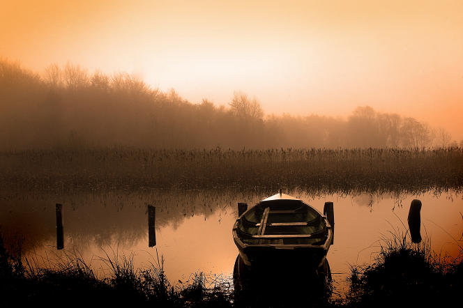 The sun rises beyond a tree line, with low-lying fog over a lake and rowboat.