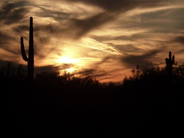 A silhouette of a cactus in a desert landscape, with the sunset seen through clouds overhead.