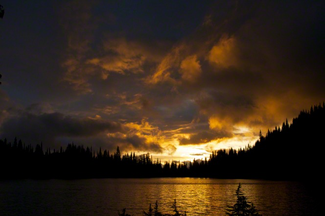 A tree line of pines are silhouetted with a setting sun behind them and a lake below.