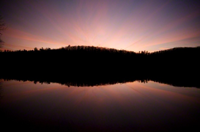 A tree line is silhouetted by the sunset, which is reflected in the water.