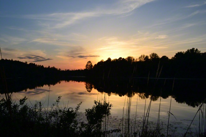 The sun rises behind a line of trees and a lake down below.