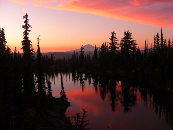 Pine trees line a lake at sunset, with a pink, purple, and yellow sky reflected in the water.