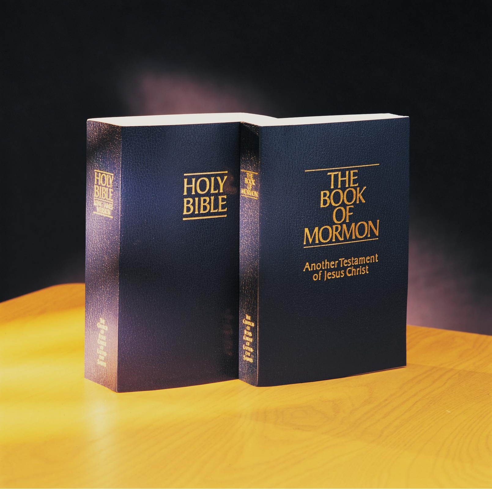 Image result for book of mormon and bible