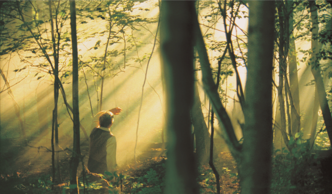 Joseph Smith Jr. kneeling in the Sacred Grove during the First Vision as shafts of light shine through the trees.