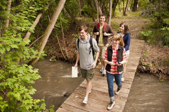 Two young couples crossing a bridge while on a hike together.