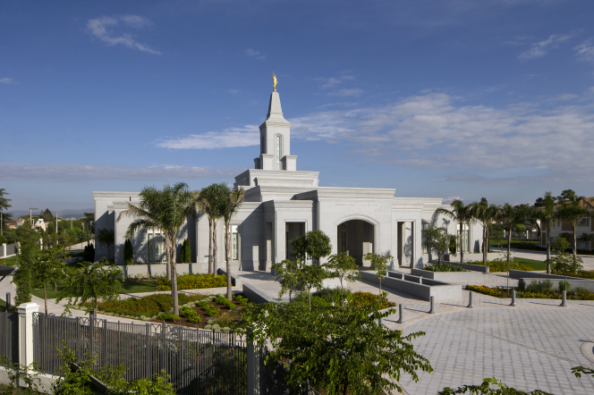 A fence and palm trees surrounding the Córdoba Argentina Temple.