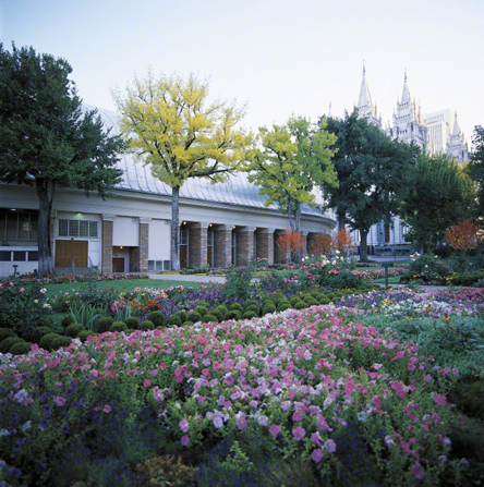 A view of the Salt Lake Tabernacle in the summer with flowers in the foreground and the temple seen in the distance.